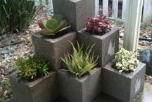 Jardinagem / Jardins!