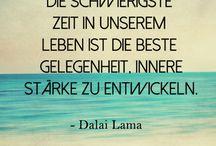 Zitate / Sprüche / Weisheiten