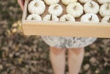 Party // Fall / Fall themed ideas and decor for autumnal get-togethers