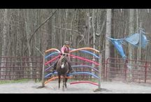 Cool Horse Obstacle Challenge Videos