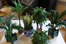 mini plants and flowers / by Nora Moore