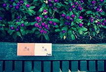 山生有幸 / 台湾のお茶メーカー。おしゃれな色で包まれた商品ラインアップは若い世帯にも受けやすいです。