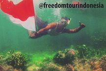 freedom tour indonesia