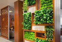 Green&flower walls / Вертикальное озеленение