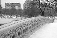New York City/Central Park / New York Photography
