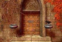 Doors & Windows / by Erika Briseño-Estrada
