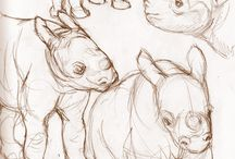 Tegne dyr / Tegningstekniker