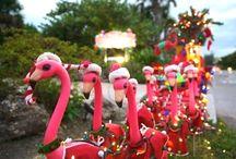 Flamingos / by Sandy Lange