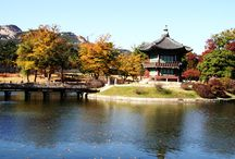 South Korea wishlist of fun