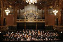 Budapeşte Festival Orkestrası Orchestra in Residence