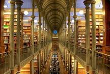 stunning libraries