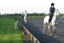 Riding Tuition