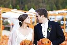 Anna's Wedding / by Amanda Faneck