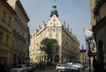 Hotel & Resorts