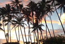 Hawaii Trip / Vacation in Hawaii