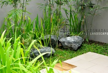 Personal - LArch Portfolio / I am a landscape architect by profession. / by Cathe Nadal