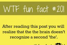 dumb facts / Find only the COOLEST facts here!