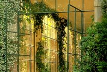 tienda verde y jaulas
