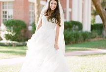 Bay Preserve February at Osprey Sarasota County  2014 Wedding / Weddings in Osprey Sarasota County Florida