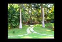 Kairali Group Videos / Kairali – The Ayurvedic Healing Village, a unique health & holiday paradise, is Green Leaf Certified by the Department of Tourism, Government of Kerala. This ayurvedic resort offers 30 elegant and comfortable luxury villas with every modern amenity like air-conditioning, satellite television, etc. and each with a distinctively different design that blends superbly with the surroundings.