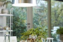 Miniaturgärten / Eine Gartenszene lässt sich fast in jeder Schale, jedem Kübel oder sogar in einem alten Koffer erschaffen. Viel Spaß mit den Ideen zum kreativen Gestalten von Gärtchen im XXS-Format!