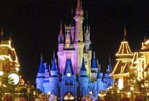 Disney World / Disney Verden