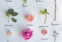 Floral inspiration / We work closely with talented florists to make your dreams come true.