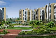 Real Estate solution in Noida