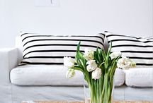 Divani, sofas and living