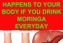 Moringa Magic