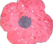 Remembrance Day / by Beth Grainger