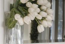 Flowers in Jars/Vases