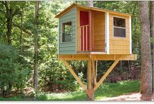 New House-treehouse