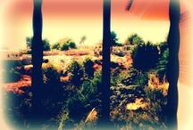 Mi entorno