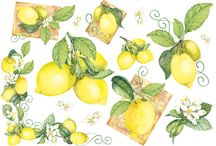 Owoce/warzywa