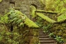 Old School Portland