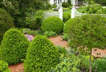 ✿Formal Gardens / Geometric and formal garden inspirations.