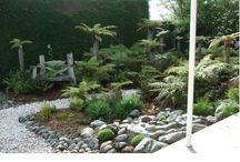 fernery ideas