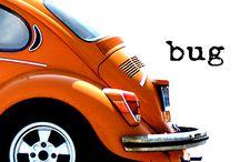 Orange / Orange colour