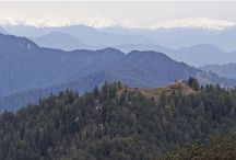 GET LOST IN THE BEAUTY OF HATU PEAK THIS LONG WEEKEND! / Hatu Peak is located at 3400 meters height from sea level and one of the highest peaks in Shimla Region. It is one of the most popular weekend destination among adventure lovers especially trekkers and bikers. People from various parts of the world come to Shimla and plan overnight stay around Hatu Peak. Road enrouting to Hatu Peak. Snow capped Himalayas view from the Hatu Peak.     Hatu Mata Temple.     Enjoy the view of Himalayas from the peak.