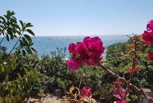 Cyprus: Fam trip