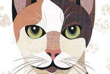 кошки собачки