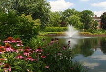 Formal Gardens / Over 30-acres of nature's jewels waiting for a visit by you.