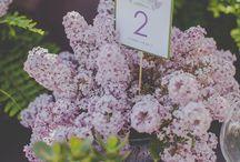 Lilac Bezbezy