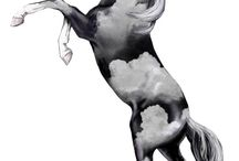 American Paint Horse Art Competition 2015 / Vote for your favorite American Paint Horse Competition design! Cast your vote November 16-27, 2015 on The Trail of Painted Ponies Official Website: http://www.trailofpaintedponies.com/poll.php