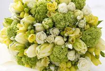 Flowers / by Karen Dotson