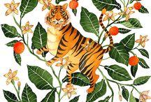 Mujeres tigre