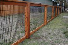 Yard & Fence