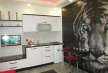 Вилла и апартаменты для отдыха в Анкаре