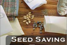 Gardening seedsaving